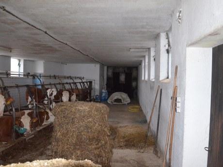 Haus ZUL